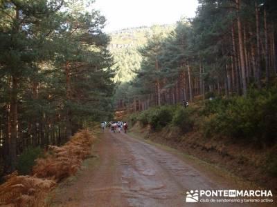 Senderismo Sierra del rincón; rutas de senderismo en madrid; senderismo